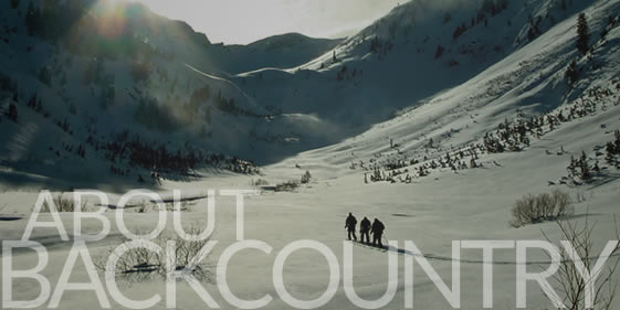About Backcountry