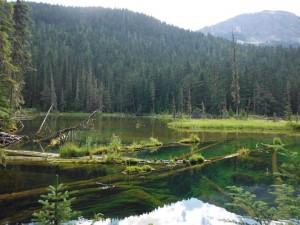 Ice Creek Lodge-Summer-SUP1