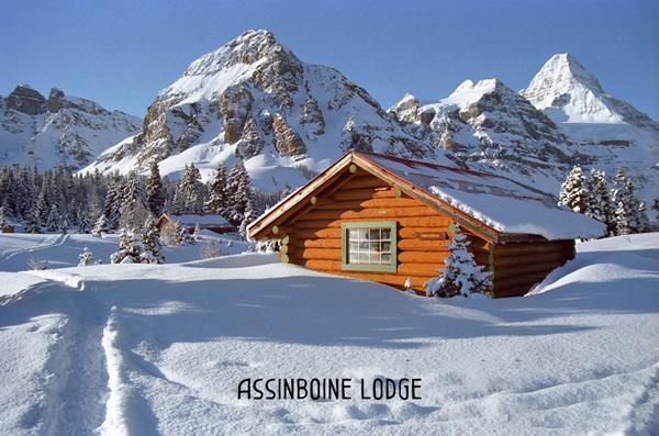 BLBCA-Blog-Assinboine-Lodge-FeaturedImage