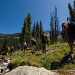 backcountry, hiking, flora, Valhalla Mountain Touring
