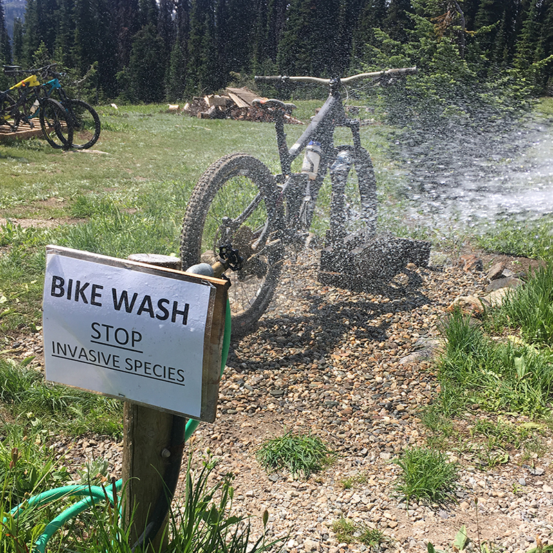 Mtb Bike Wash(ig)