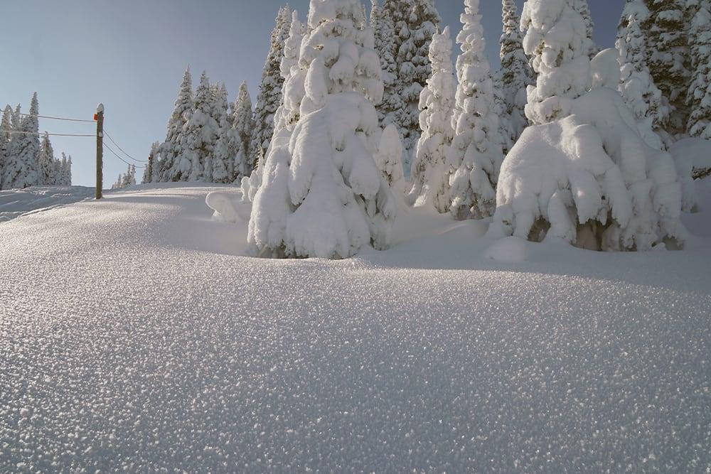 Sunny morning after fresh snowfall